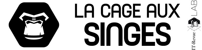 Agence web digitale LCAS Agency - It-revue